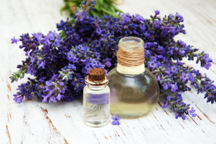 fresh lavender and massage oil